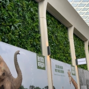 green wall tilburg winkelcentrum