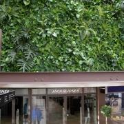 Amstelveen Green Walls