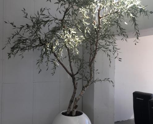 Eucalyptus kunstboom